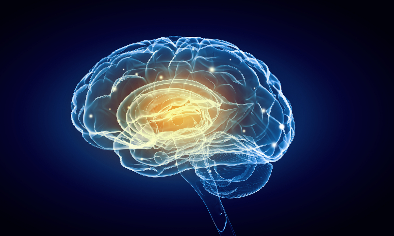 Concept of human intelligence with human brain on blue backgroun